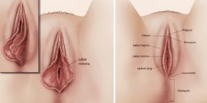 cirurgia intima